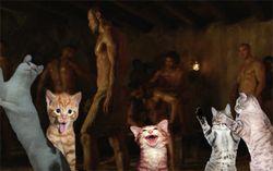 Kittensspartans-thumb-500x314-2161