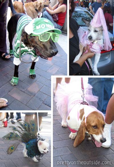 Doggie_costumes